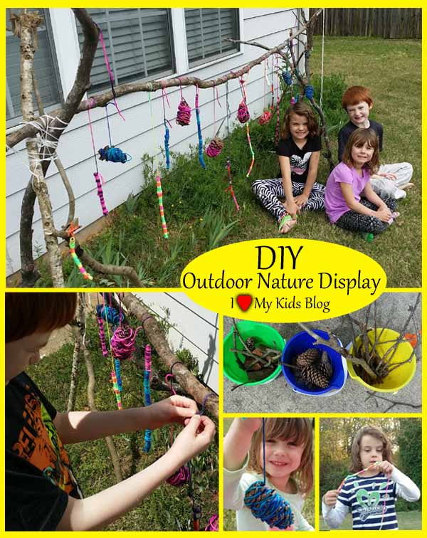 DIY Outdoor nature display