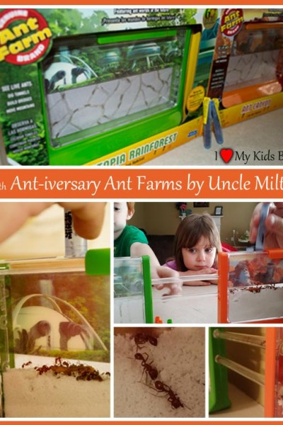 Uncle Milton Ant Farms Fascinate Children of all Ages