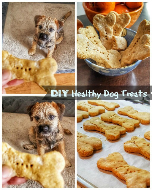 DIY Healthy homemade dog treats
