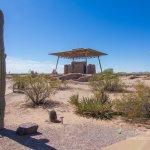 Casa Grande Ruins saguaro