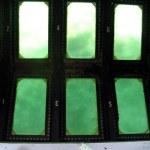 Biscayne NP glass bottom boat