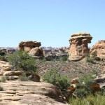 Canyonlands NP Big Spring Canyon