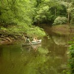 Congaree NP Cedar Creek canoeing