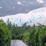 Kenai Fjords NP Exit Glacier summer