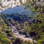 Sequoia NP Kaweah River