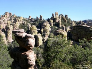 Chiricahua NM Echo Canyon Trail