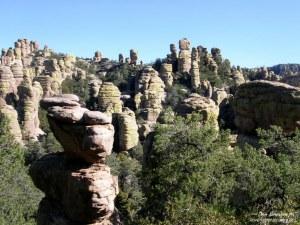 Chiricahua NM Echo Canyon Trail