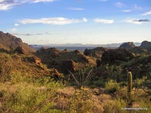 Organ Pipe Cactus NM Bull Pasture Trail