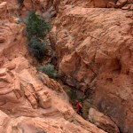 Red Rock Canyon NCA Calico Tanks Trail