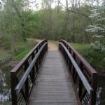 Richmond NBP Beaver Dam Creek