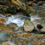Shenandoah NP Doyles River