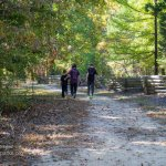 Natchez Trace family walking
