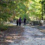 Natchez Trace family walking