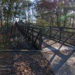 Ocmulgee bridge