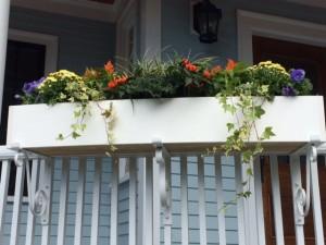 Fleuri Designs windowbox gardens for fall
