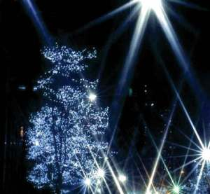 Newton Holiday Lighting Ceremony