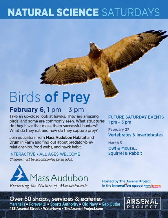 Arsenal Project - Natural Science Saturdays - Feb 6