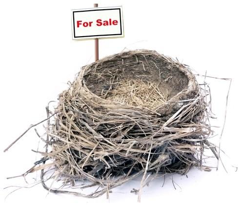 Dismantling the Nest