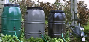 Dirty Boy Composting Partnering with The Great American Rain Barrel Company