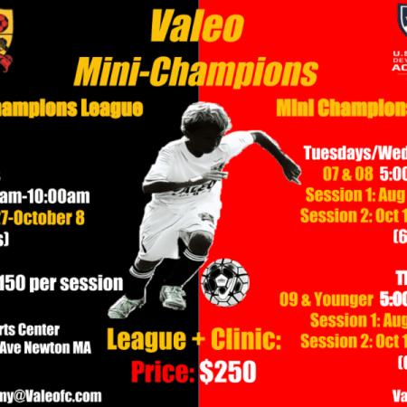 Valeo FC Mini Champs