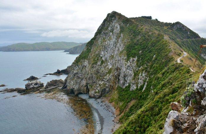 nugget point coastline