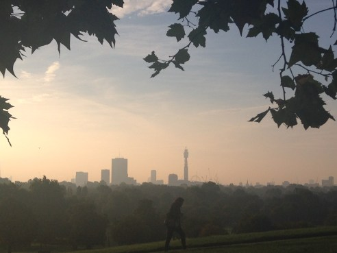 Autumn morning. © 2013 iLovePrimroseHill, all rights reserved.