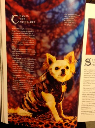 CHANEL MODELLING FOR PHOENIX MAGAZINE - AND HER INTERVIEW! Photo Anna Namiki