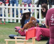 'A LOVELY WAY TO BE WOKEN UP.' SINITTA IMPRESSED BY HEARING DOGS