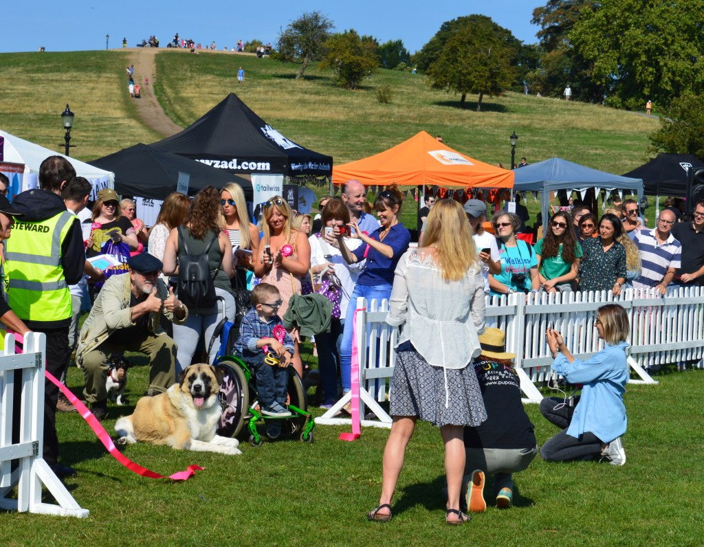 OWEN DECLARES PUPAID OPEN. SO MANY PUPAID HEROES IN THIS PHOTO!