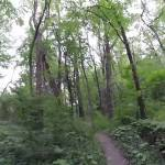 Beautiful Bike trails ride through Corby North – St. Joseph MO