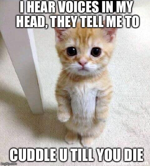 I hear voices in my head they tell me to cuddle u till you d?resize=480%2C532&ssl=1 hilarious cuddle memes and images for couple cuddle memes