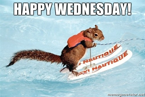 Funny Memes For Wednesday : Just another wednesday imgflip