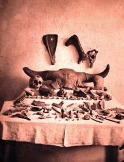 Múzeumrészletek a 20.század elején