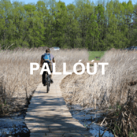 pallout