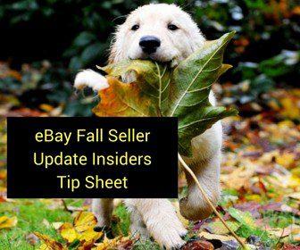 eBay Fall Seller Update Insiders Tip Sheet