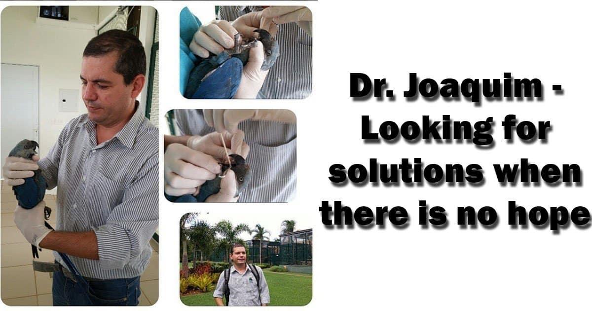 Dr. Joaquim with patient parrot