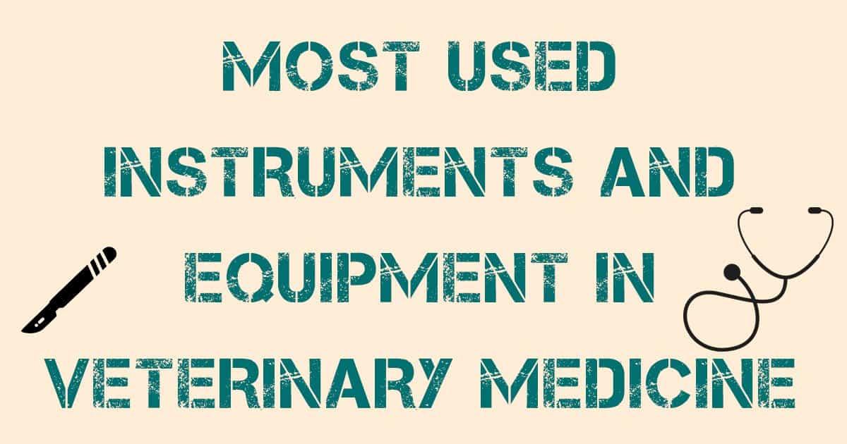 i love veterinary