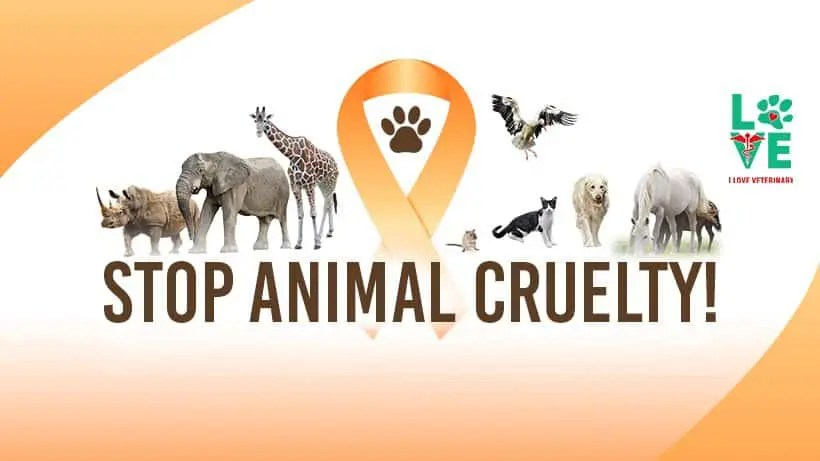 animal cruelty prevention month april 2018