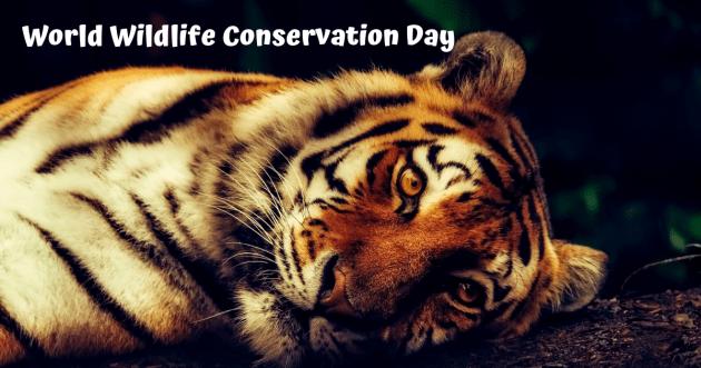 World Wildlife Conservation Day