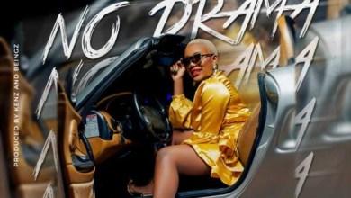 Towela ft. T Sean - No Drama (Remix)