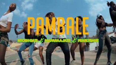 Rich Bizzy ft. Ntosh Gazi, Mapara A Jazz & Pearlysane – Pambale Mp3 Download