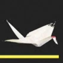 concorso gratis scripta volant