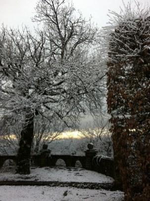 Snowy winter view in the garden