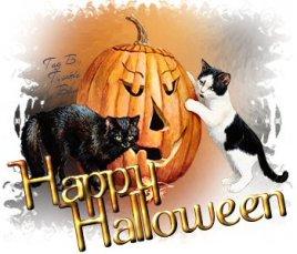 HalloweenKitties_TB_HH-vi