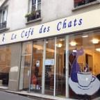 le-cafe-des-chats-parigi