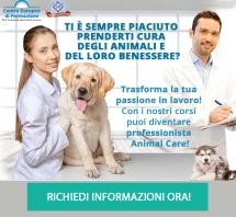 dem_cef-animalcare