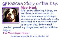 Hank-050816