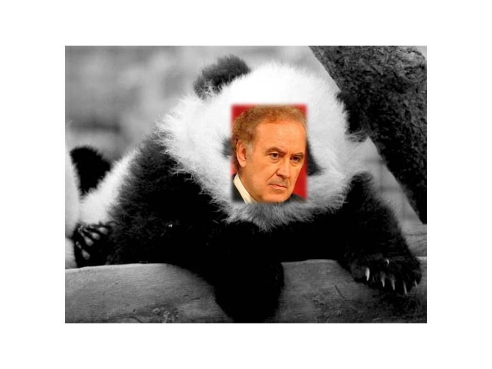 Pandoro, Il Panda Santoro