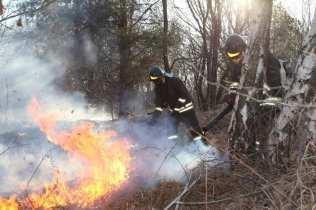 06032015 incendio parco groane foto di matteo turconi (11)