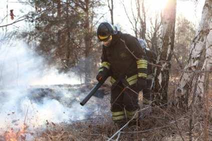 06032015 incendio parco groane foto di matteo turconi (12)